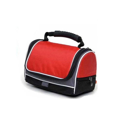 New style fashion lunch cooler bag